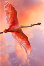 Preview iPhone wallpaper Red feather bird flying in the sky