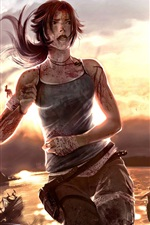 Preview iPhone wallpaper 2012 Tomb Raider HD