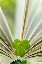 Preview iPhone wallpaper Book and green leaf