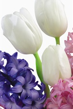 Preview iPhone wallpaper Bouquet of tulips dotted