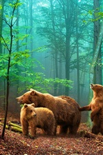 Preview iPhone wallpaper Brown bears in the forest
