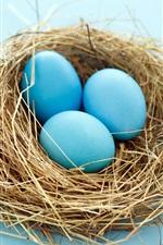 Easter egg no ninho