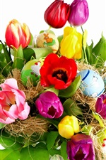 Holidays Easter tulip flowers and eggs