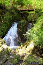 Preview iPhone wallpaper Small waterfall in the forest