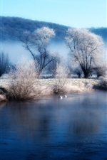 Preview iPhone wallpaper Winter lake shore the morning mist