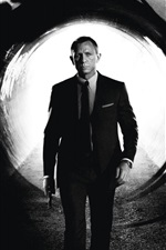 Preview iPhone wallpaper 2012 Skyfall
