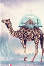 Preview iPhone wallpaper Creative pictures, camel India Paradise