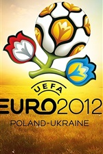 Preview iPhone wallpaper Football Euro 2012