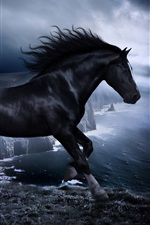Preview iPhone wallpaper Horse in the dark