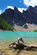 Preview iPhone wallpaper Lake Agnes Banff Canada