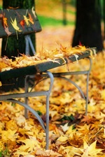 Preview iPhone wallpaper Autumn leaves bench in the park