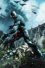 Preview iPhone wallpaper Crysis 3 Fighters