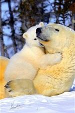 Preview iPhone wallpaper Happy polar bear