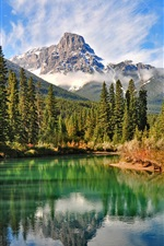 Natural scenery of the Canadian forest lake
