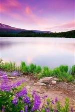 Preview iPhone wallpaper Spring lake glow sky