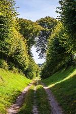 Der Sommer Naturholz Straße