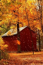 Preview iPhone wallpaper Autumn red maple forest cabins