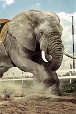 Preview iPhone wallpaper Creative design, dog and elephant race