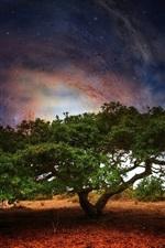 미리보기 iPhone 배경 화면 크리에이티브 디자인, 나무 갤럭시 지구