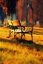 Preview iPhone wallpaper Golden autumn park nature landscape, lawn bench sun