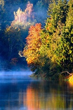 Preview iPhone wallpaper Latvian autumn forest river mist in the morning