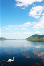 Preview iPhone wallpaper Mountain lake scenery, a swan in water