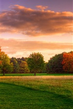 Preview iPhone wallpaper Natural landscape, autumn sunrise, forest sky clouds