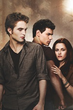 Preview iPhone wallpaper The Twilight Saga: New Moon