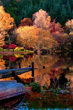 Preview iPhone wallpaper The autumn lake forest morning