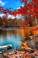 Preview iPhone wallpaper Autumn river, wooden bridge, woods and red leaves