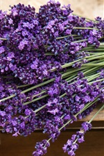 Preview iPhone wallpaper Bouquet of purple lavender flowers