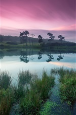 Preview iPhone wallpaper Dusk beauty, tranquil lakes, green trees, purple sky