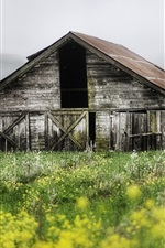 Spring landscape of farms, abandoned wooden house