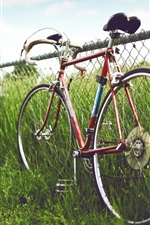 Preview iPhone wallpaper The fenced meadows edge of bike