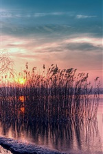 Preview iPhone wallpaper Twilight beautiful landscape, quiet lake, reed, sunset