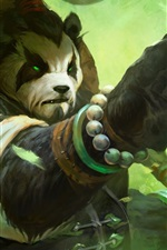 Preview iPhone wallpaper World of Warcraft: Mists Of Pandaria HD