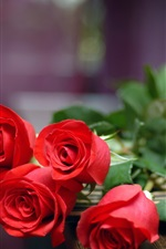 Preview iPhone wallpaper A Gift of Love, five red roses