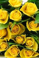 Preview iPhone wallpaper A bouquet flowers, yellow roses