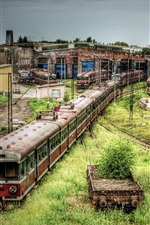 Abandoned subway cars and trains, overgrown with weeds