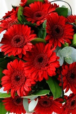 Preview iPhone wallpaper Bouquet of red gerbera flowers