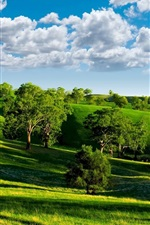 Preview iPhone wallpaper Green valley, nature scenery, blue sky, white clouds, trees, grasslands, sun
