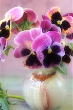 Preview iPhone wallpaper Home decorated with flowers, the circular vase of violets