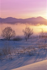 Preview iPhone wallpaper Japan winter nature dusk snow