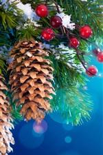 Ano Novo decoração da árvore de Natal, neve, galhos, frutos