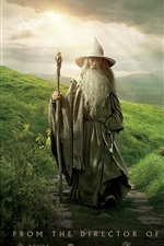 Preview iPhone wallpaper The Hobbit: An Unexpected Journey HD movie