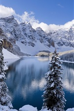 Preview iPhone wallpaper Winter, snow-covered mountains and trees, icy lake