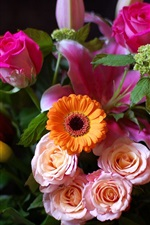 iPhone fondos de pantalla Un ramo de rosas, crisantemos