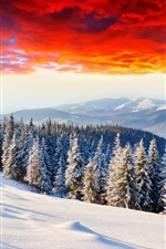 Preview iPhone wallpaper Cold winter, thick snow, sunrise glow, forest, mountains