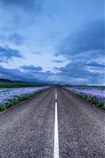 Preview iPhone wallpaper Iceland landscape, road, meadows, flowers, horizon, blue sky