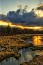Preview iPhone wallpaper Wetlands, trees, clouds, sunset, grass, water stream, beautiful scenery